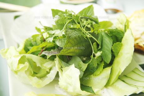 ベトナムのサラダの写真素材 [FYI00321777]