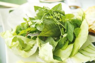 ベトナムのサラダの素材 [FYI00321777]