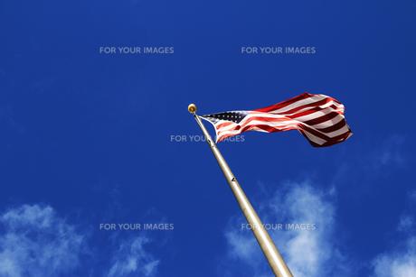 ハワイ州政府庁の星条旗の写真素材 [FYI00321796]