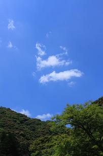 稜線と青空の写真素材 [FYI00321805]