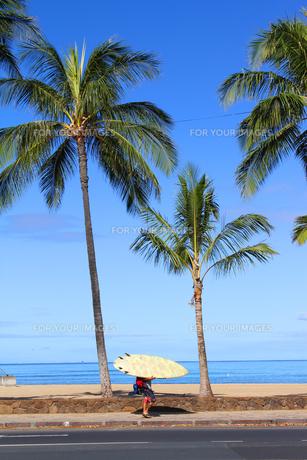 ワイキキビーチのサーファーの素材 [FYI00321821]