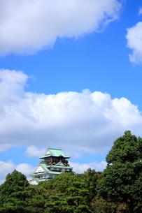 大阪城の素材 [FYI00322042]