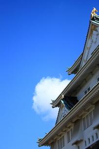 大阪城の素材 [FYI00322045]