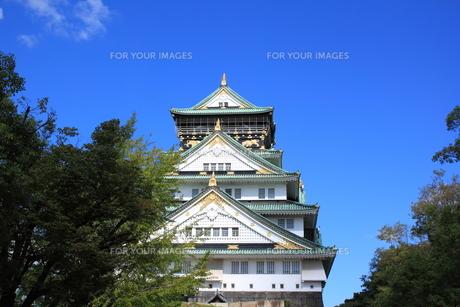 大阪城の素材 [FYI00322056]
