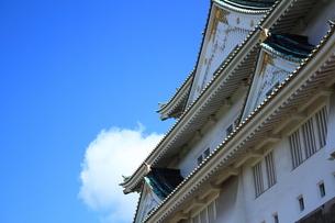 大阪城の素材 [FYI00322057]