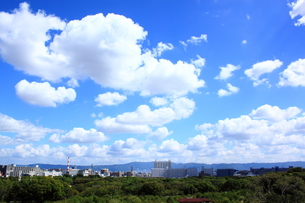 大阪城公園からの眺望の素材 [FYI00322059]