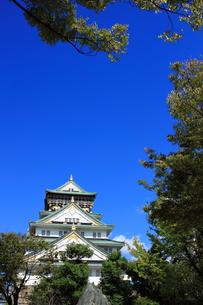 大阪城の素材 [FYI00322060]