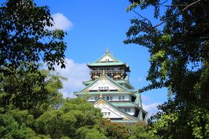 大阪城の素材 [FYI00322063]