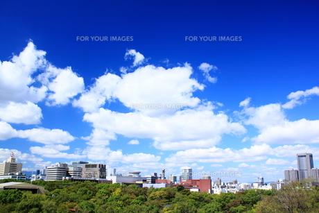 大阪城から望むビジネス街の素材 [FYI00322066]