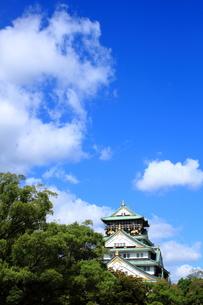 大阪城の素材 [FYI00322071]