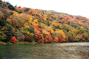 嵐山と保津川の素材 [FYI00322089]