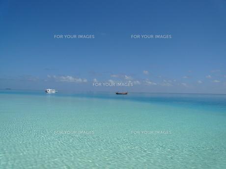 モルディブのラグーンの写真素材 [FYI00322480]