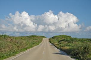 東平安名崎の灯台へつづく道と入道雲の写真素材 [FYI00322671]