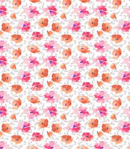水彩の花と唐草2の写真素材 [FYI00322755]