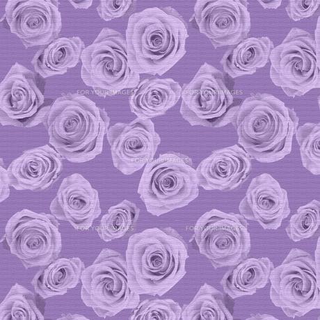 バラの織物の素材 [FYI00322789]