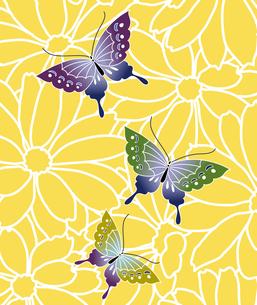 花と蝶の写真素材 [FYI00322791]
