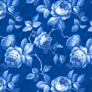 青いバラの写真素材 [FYI00322801]