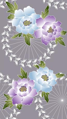 牡丹と蝶の素材 [FYI00322802]