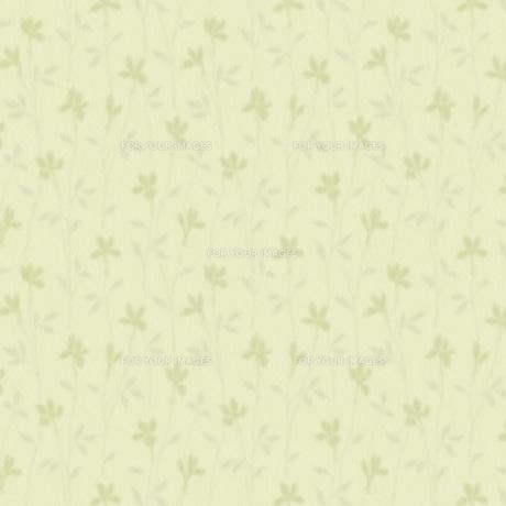 ソフトなイメージの草花の素材 [FYI00322819]