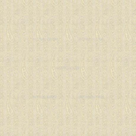 織物風ペイズリー柄の素材 [FYI00322835]