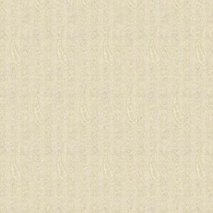 織物風ペイズリー柄の写真素材 [FYI00322835]