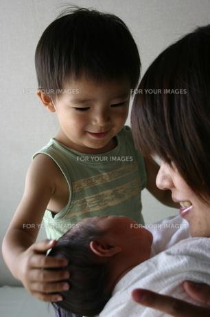 妹の誕生の写真素材 [FYI00322957]