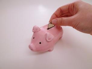 ピンクのブタの貯金箱の写真素材 [FYI00322984]