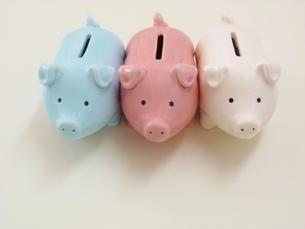3匹のブタの貯金箱の写真素材 [FYI00323005]