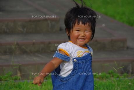 夏の女の子の写真素材 [FYI00323576]