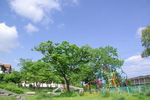 公園の写真素材 [FYI00323586]