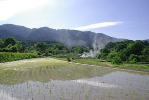 里山の風景の写真素材 [FYI00323592]