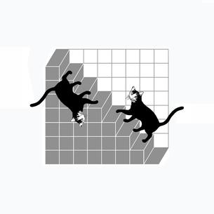 不思議な階段と黒猫の写真素材 [FYI00323614]