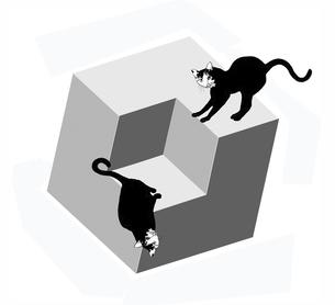 マジックキューブと黒猫の写真素材 [FYI00323618]