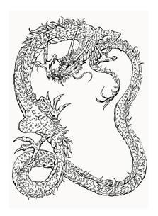 ドラゴン線画の写真素材 [FYI00323640]