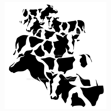 牛迷彩の写真素材 [FYI00323665]