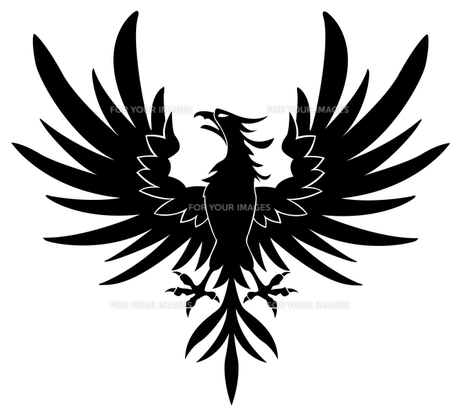 Brave Birdの写真素材 [FYI00323672]