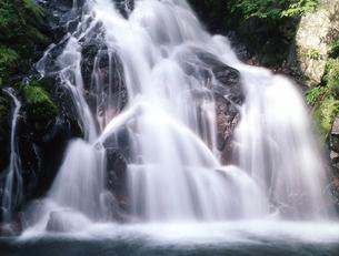お仙ヶ渕の滝の写真素材 [FYI00323896]