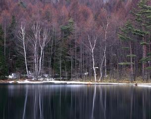 奥蓼科-湖畔の残り雪の写真素材 [FYI00323897]