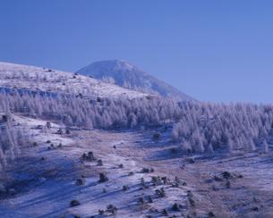霧ヶ峰の雪化粧の写真素材 [FYI00323922]