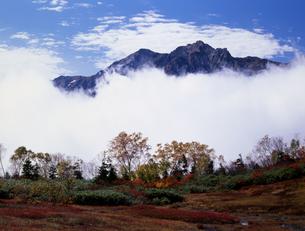 栂池-雲間に浮いた山の写真素材 [FYI00323929]