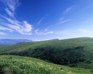 霧ヶ峰高原の夏の写真素材 [FYI00323941]