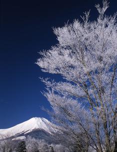 富士山と樹氷の写真素材 [FYI00323964]