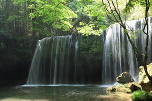 鍋ヶ滝の写真素材 [FYI00324118]