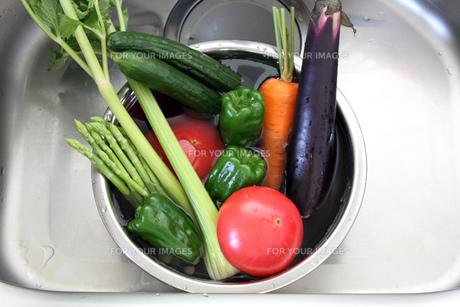 夏野菜の写真素材 [FYI00324122]