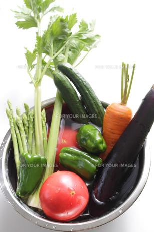野菜集合の写真素材 [FYI00324124]