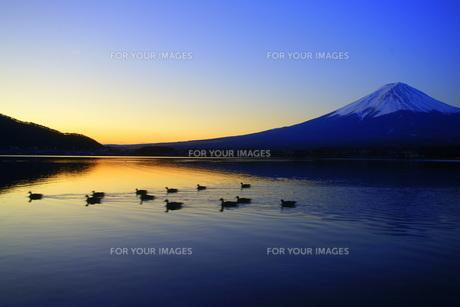 河口湖の夜明けの素材 [FYI00324210]