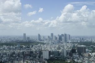 新宿の高層ビル群の写真素材 [FYI00324459]