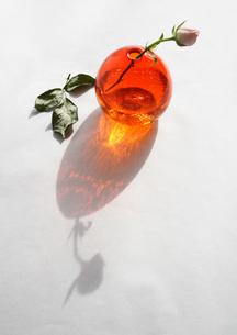 花瓶と花の写真素材 [FYI00324552]