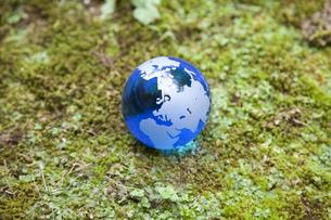 苔むす土地と地球の写真素材 [FYI00324599]