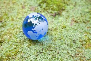 苔むす土地と地球の写真素材 [FYI00324618]